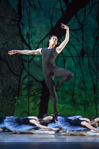 <p><em>Tombeaux: </em>William Bracewell with Artists of Birmingham Royal Ballet</p>. Credit: Bill Cooper.