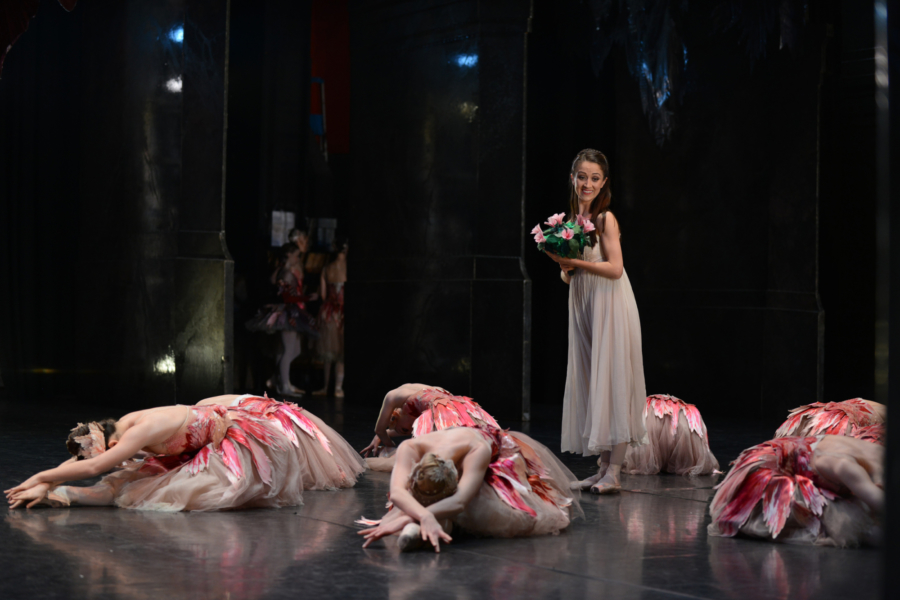 <p><em>The Nutcracker </em>from the wings: Laura Purkiss as Clara with Artists of Birmingham as Flowers</p>. Credit: Roy Smiljanic.