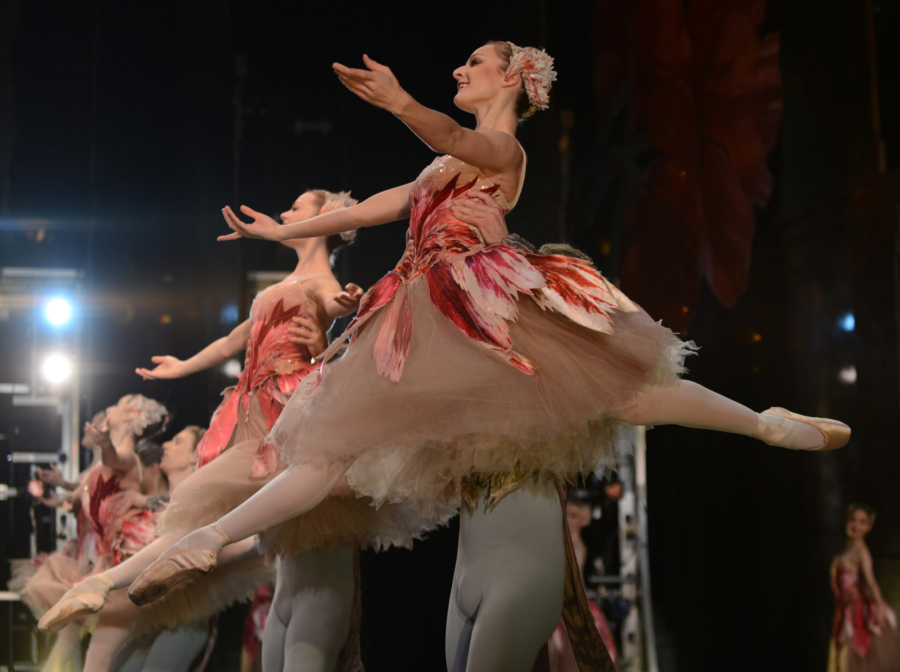 <p><em>The Nutcracker</em> from the wings: Laura-Jane Gibson as a Flower</p>. Credit: Roy Smiljanic.